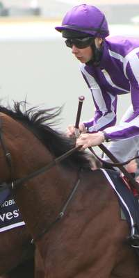 St Nicholas Abbey, Irish racehorse, dies at age 6