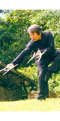 Su Yu-chang, Chinese martial artist, dies at age 78